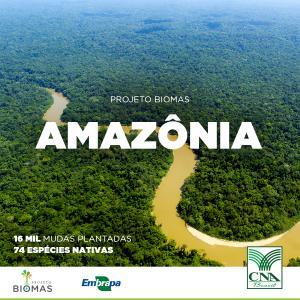 CNA_post_biomas-amazonia